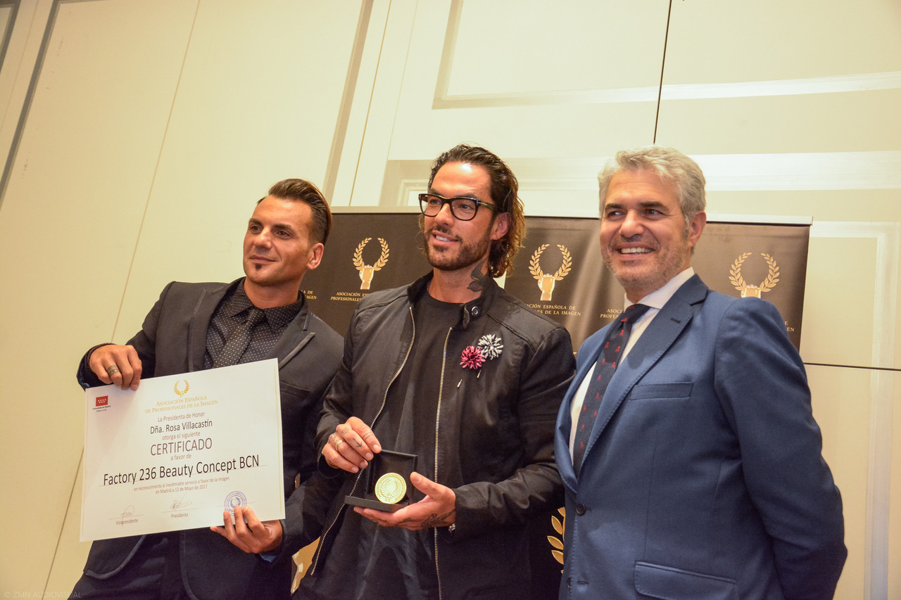 """Entrega de """"Medalla de Oro""""  de la Asociación Española de profesionales de la imagen"""